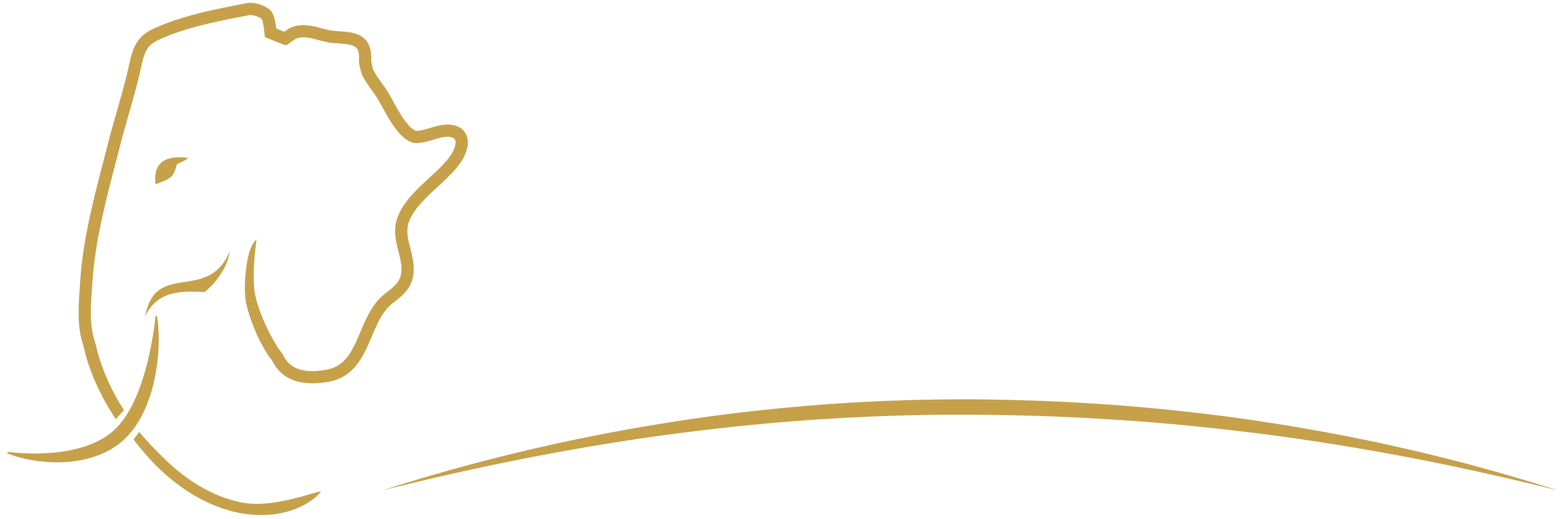 Revealing Africa